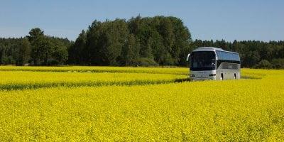 Flygbussarna Charter-buss-rapsfalt