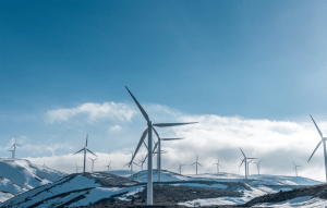 vindkraftverk klimatkompensera event